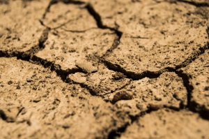 The Worlds Soil is Drying Out